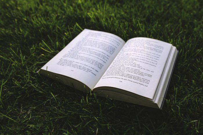 book_on_grass