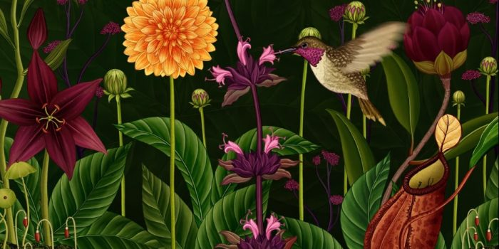 Stunning 3-Minute Animation Beautifully Illustrates the Secret Life of Flowers