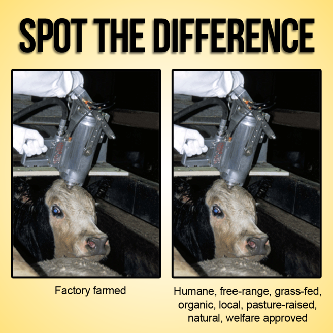 spot-the-difference-humane-slaughter