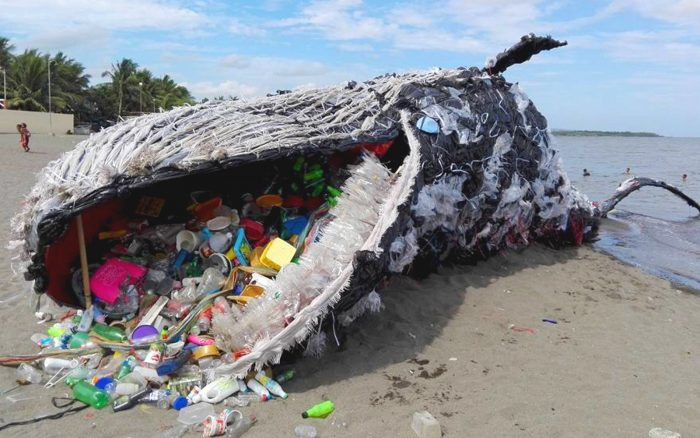 whale-plastic-ocean-pollution