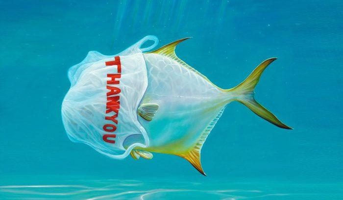 plastic pollution thumbnail